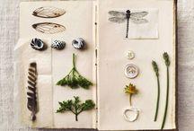 Paper - composition, Portfolio