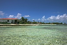 Bonaire- Destination Wedding Venue