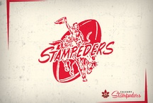 StampsFans.com / by StampsFans.com