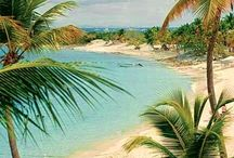 Vintage tropical pictures
