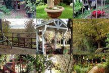 My garden- bahçem