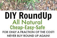 Weed killers DIY All Natural