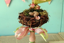 Bird Cages And Bird Nests