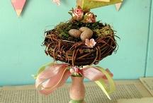 Nests & Eggs & Birds