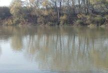 Tisza / A Tisza folyó Tuzsérnál