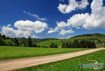 Schwarzwald / Bilder aus dem Schwarzwald