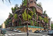 More Urban Wilderness
