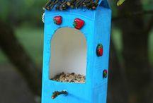 mangoires a oiseaux