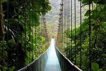 Costa Rica: My Romantic Adventure / by Victoria Pedneault-Peasland
