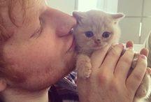 Ed Sheeran♡♡♡♡♡♡♡♡♡♡
