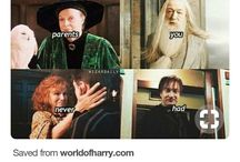 you are a wizard harry
