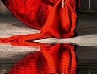 Reds / by Pamela Cashdollar
