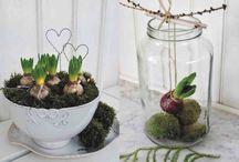 Decoratie bloemen / Decoratie bloemen