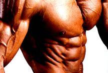 Definição Muscular!!!