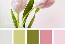 color wonder / szín inspirációk
