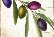 Zeytin -  olive