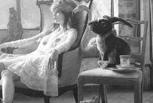 Alice in Wonderland - angels in america