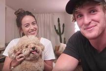 Logan Paul X Chloe Bennet / Logan Paul and Chloe Bennet have been under the eye of paparazzo since they were spotted getting cozy with one another at a beach in Hawaii on July 4, 2017.