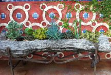 Spanish Backyard
