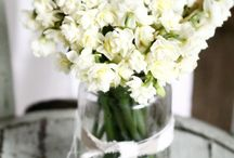 decor / by Tami Fuller-Bushway