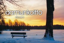 Finnish words and language