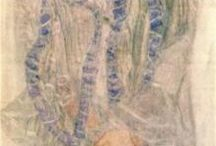 Gustav Klimt ! / There is no self-portrait of me. Gustav Klimt