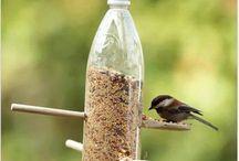 Voeder ideeën voor vogels