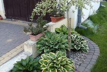 Schattenplätze Garten