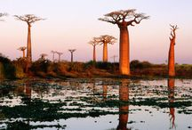 Africa - Places I'd like to go to