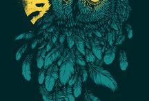 baykuşlar