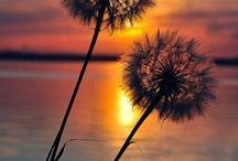 mooie luchten en natuur...