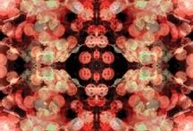 Symmetries