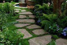 Stones paths