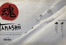 Top Ski & Snowboard Trailers for Winter 2015/16