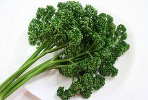 旬の青果 : 香味野菜 / 丸友中部青果 「旬の青果」に登録してある「香味野菜」の一覧です。