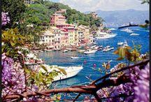 Italia mi amor