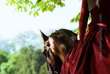 andalúz ló