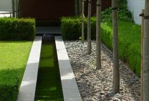 Front garden ideas / For the front garden
