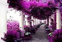 Italy.  Ιταλία
