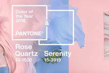 TRENDS | pantone colors / 2016 Pantone Color inspiration for the home. Home Decor & Home Color Ideas by Jennifer Adams #LoveComingHome
