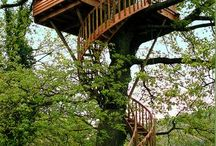 Treehouses / by Sherry Armstrong