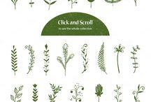 イラスト植物