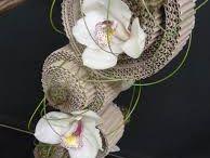 Blommor, växter