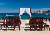 Dream Wedding / by Lindsey Markus