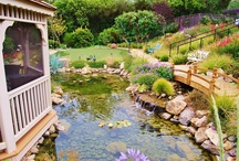 Los Angeles Ponds & Waterfalls / Custom Waterfalls and Ponds