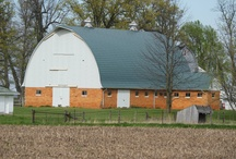 Love of Barns / Love of barns / by Terri Altherr