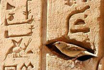 Egittomania / by gab