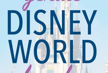 Walt Disney World Tips / Make your Walt Disney World vacation the most magical ever with these amazing tips & solid advice!   This group board is for Disney Social Media bloggers - is by invite only - and members can pin 2 times per day.