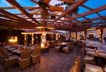 Where to Dine  / by Los Cabos Tourism