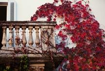 Porches/Balconies